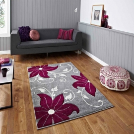 Rugs Traditional and Modern